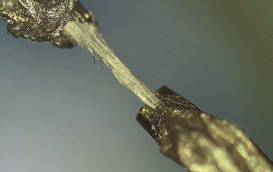 apl-kholkin-microtube-resized-web