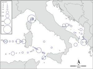 mappa_microplastiche_cnr